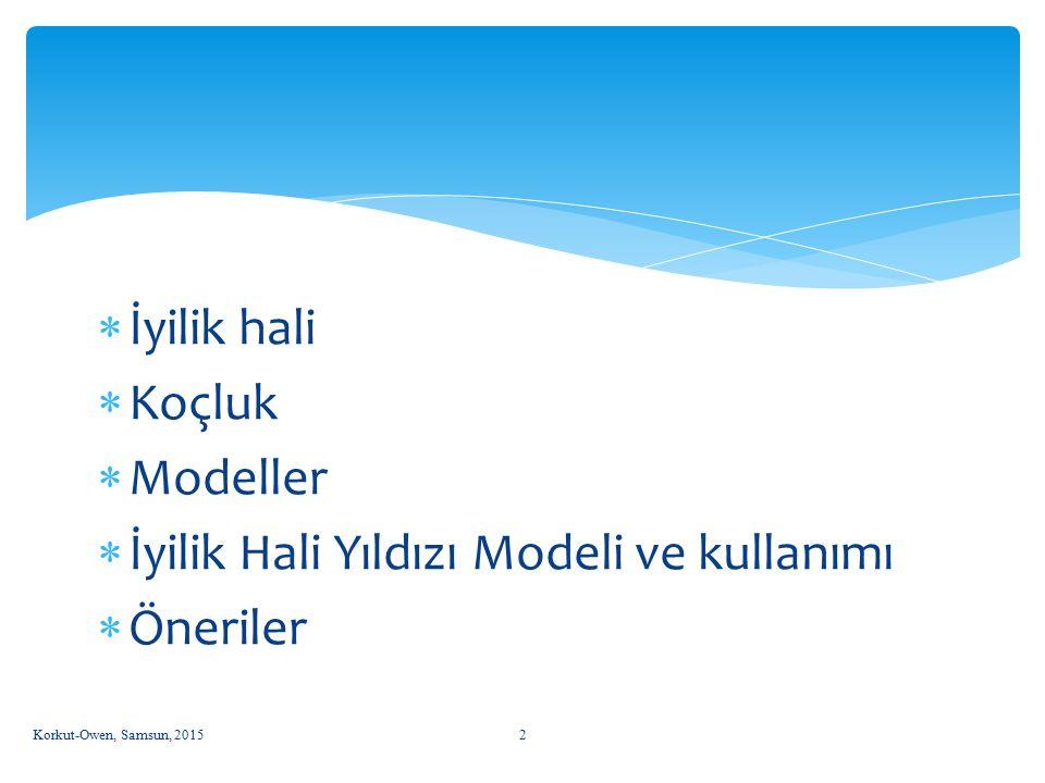 İyilik Hali Yıldızı Modeli ve kullanımı Öneriler