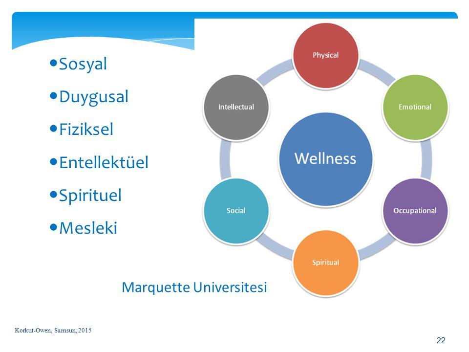 Sosyal Duygusal Fiziksel Entellektüel Spirituel Mesleki