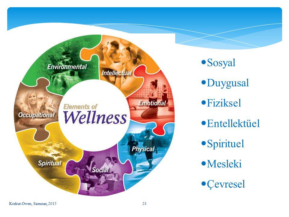 Sosyal Duygusal Fiziksel Entellektüel Spirituel Mesleki Çevresel