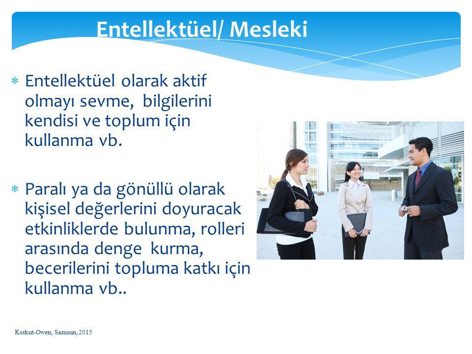 Entellektüel/ Mesleki