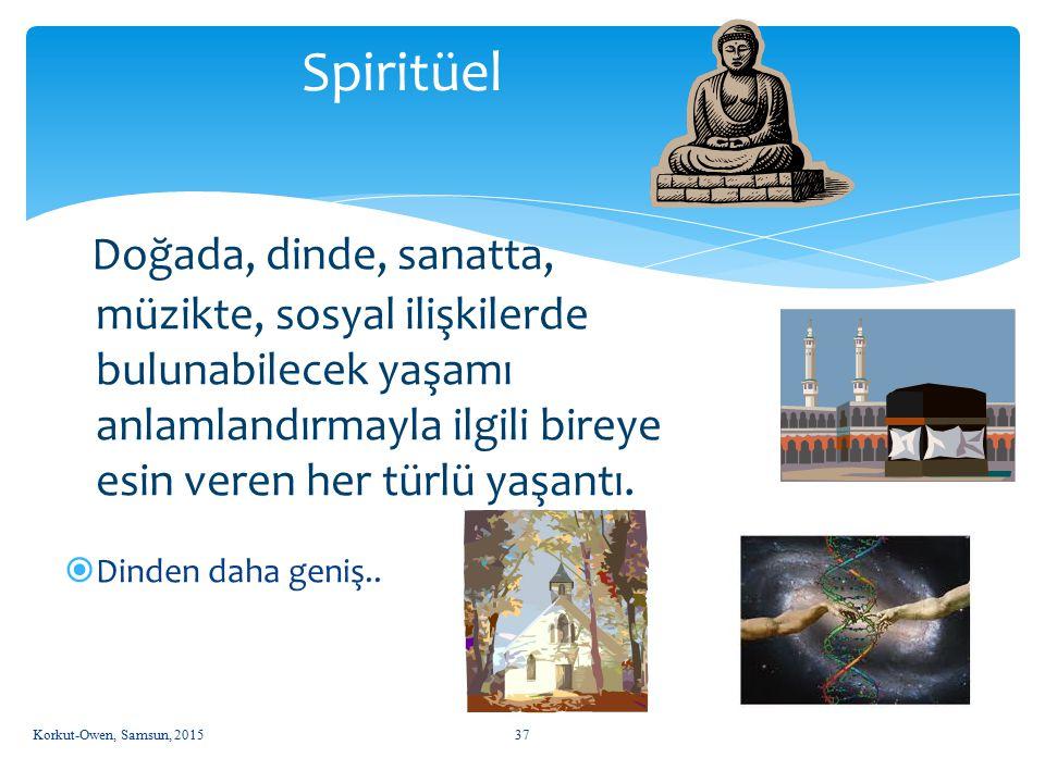 Spiritüel Doğada, dinde, sanatta, müzikte, sosyal ilişkilerde bulunabilecek yaşamı anlamlandırmayla ilgili bireye esin veren her türlü yaşantı.