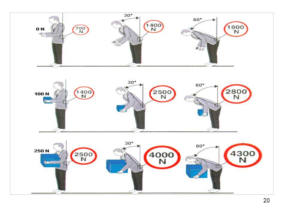 Druckkraft FL5 am Lenden-Kreuzbein-Übergang; Lendenwirbelsäulenbelastung in Abhängigkeit von Rumpfbeugung und Lastgewicht