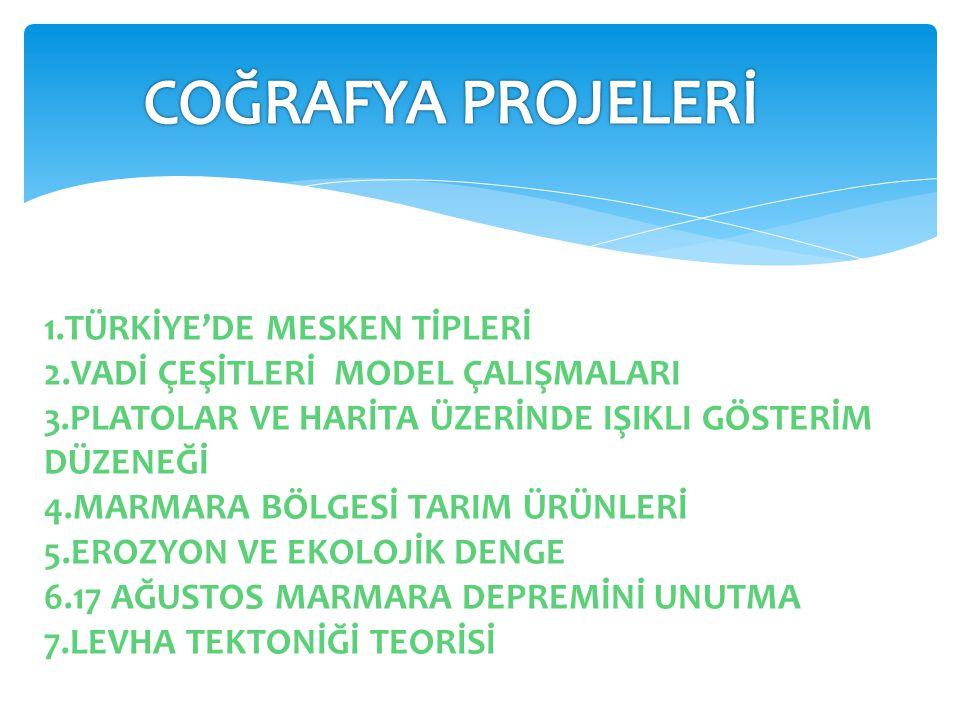 COĞRAFYA PROJELERİ 1.TÜRKİYE'DE MESKEN TİPLERİ