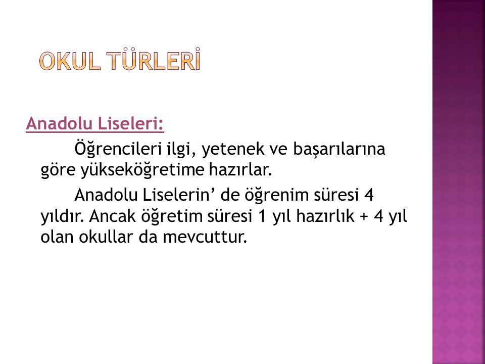 OKUL TÜRLERİ Anadolu Liseleri:
