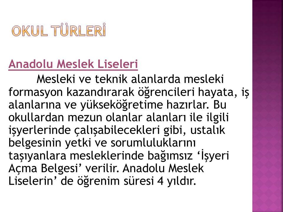OKUL TÜRLERİ Anadolu Meslek Liseleri