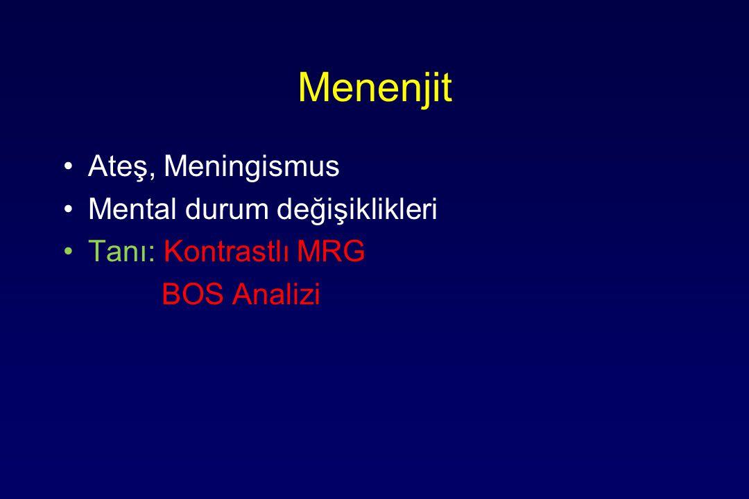 Menenjit Ateş, Meningismus Mental durum değişiklikleri