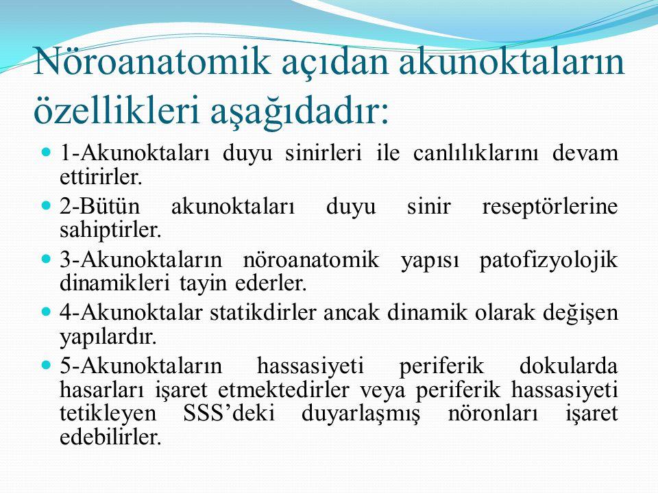 Nöroanatomik açıdan akunoktaların özellikleri aşağıdadır: