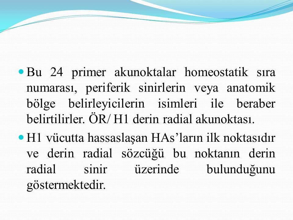 Bu 24 primer akunoktalar homeostatik sıra numarası, periferik sinirlerin veya anatomik bölge belirleyicilerin isimleri ile beraber belirtilirler. ÖR/ H1 derin radial akunoktası.