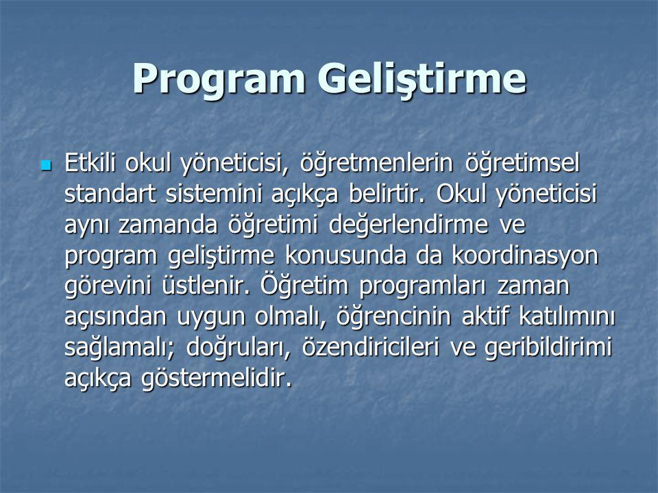 Program Geliştirme