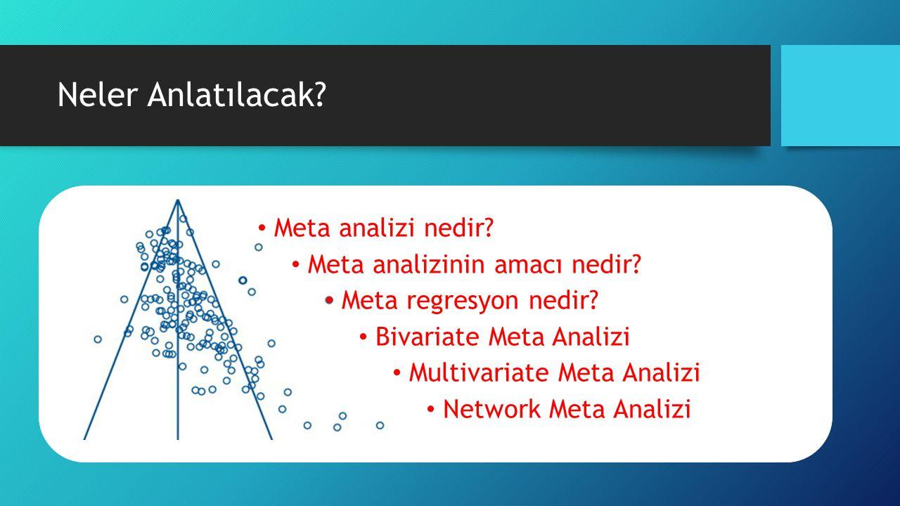 Neler Anlatılacak Meta analizi nedir Meta analizinin amacı nedir