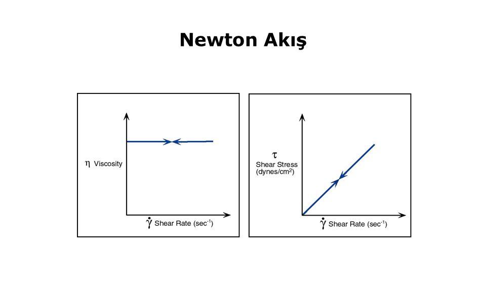 51 Newton Akış