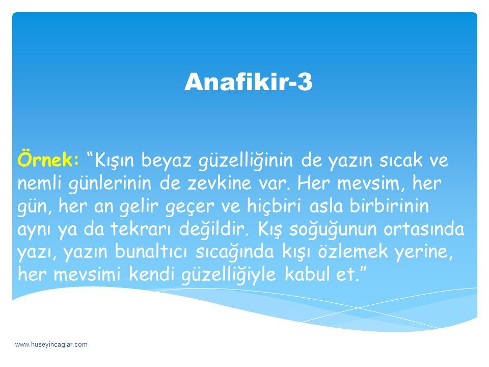Anafikir-3
