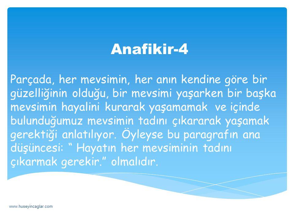 Anafikir-4