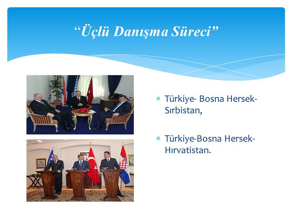 Üçlü Danışma Süreci Türkiye- Bosna Hersek- Sırbistan,