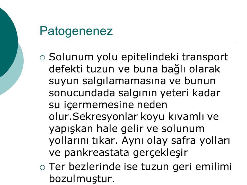 Patogenenez