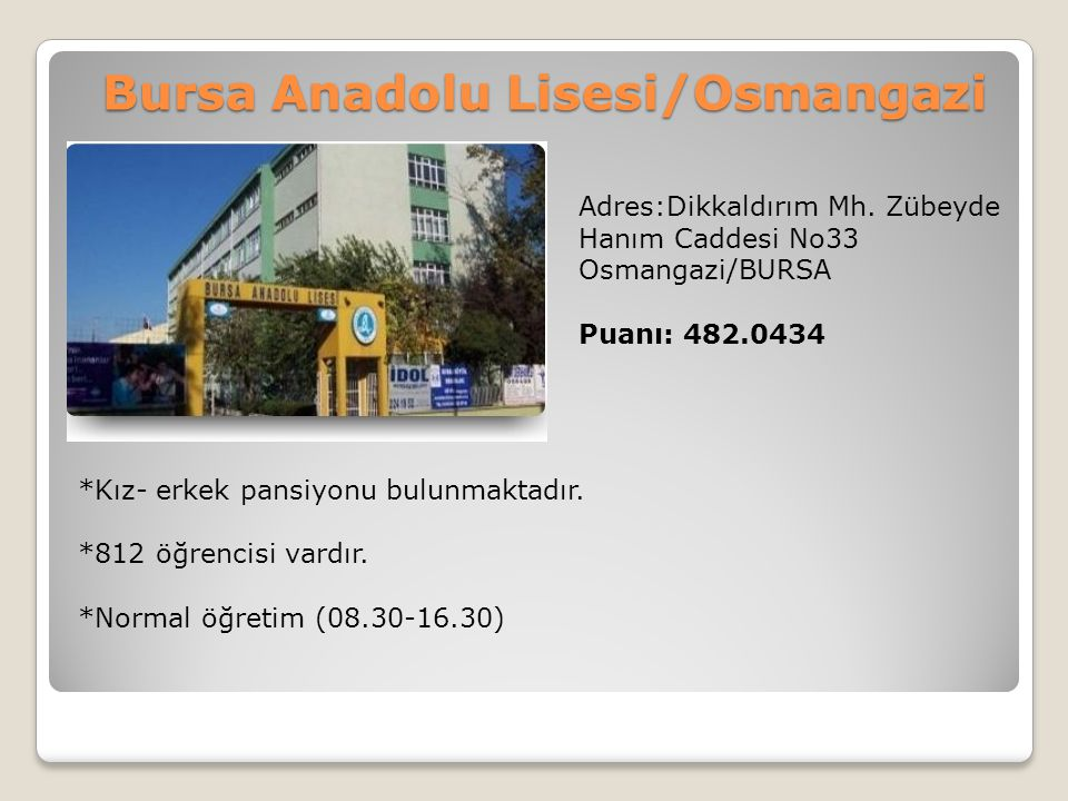 Bursa Anadolu Lisesi/Osmangazi
