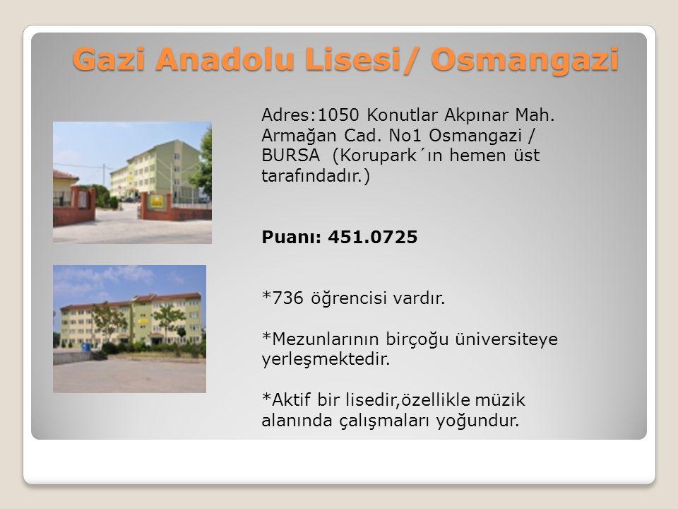 Gazi Anadolu Lisesi/ Osmangazi