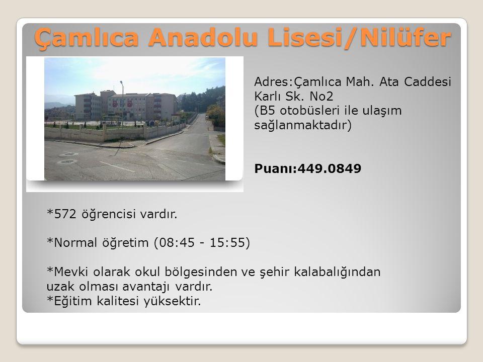 Çamlıca Anadolu Lisesi/Nilüfer