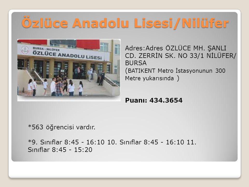Özlüce Anadolu Lisesi/Nilüfer