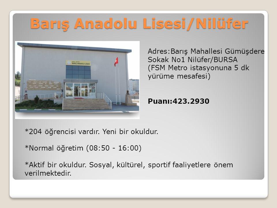 Barış Anadolu Lisesi/Nilüfer