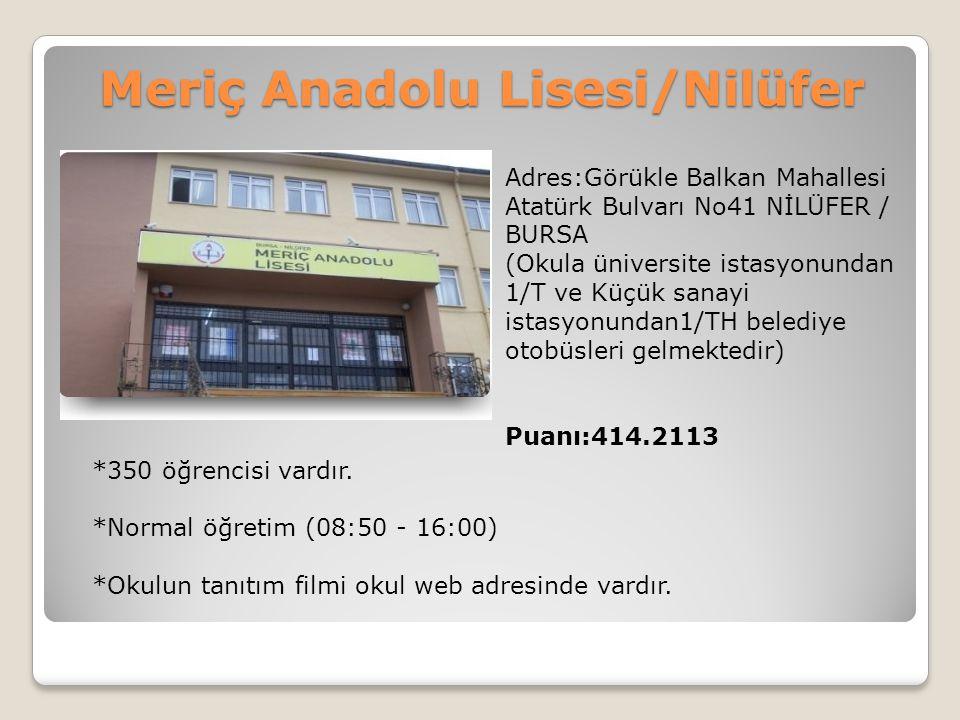 Meriç Anadolu Lisesi/Nilüfer
