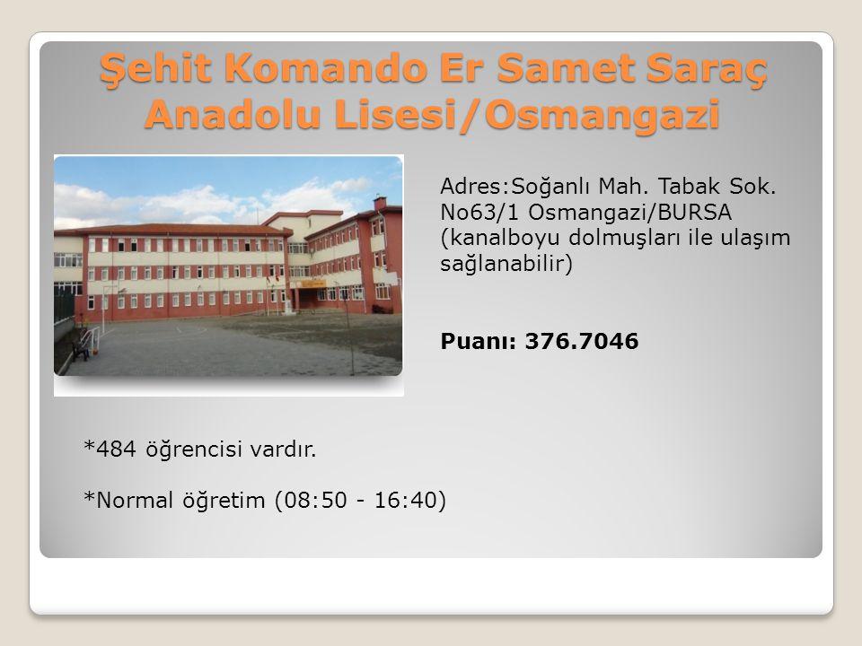 Şehit Komando Er Samet Saraç Anadolu Lisesi/Osmangazi