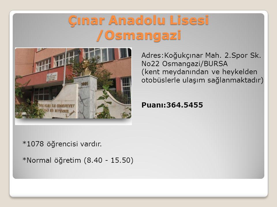Çınar Anadolu Lisesi /Osmangazi