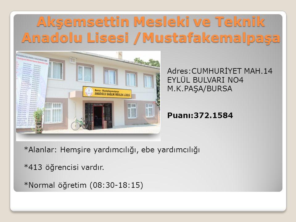 Akşemsettin Mesleki ve Teknik Anadolu Lisesi /Mustafakemalpaşa