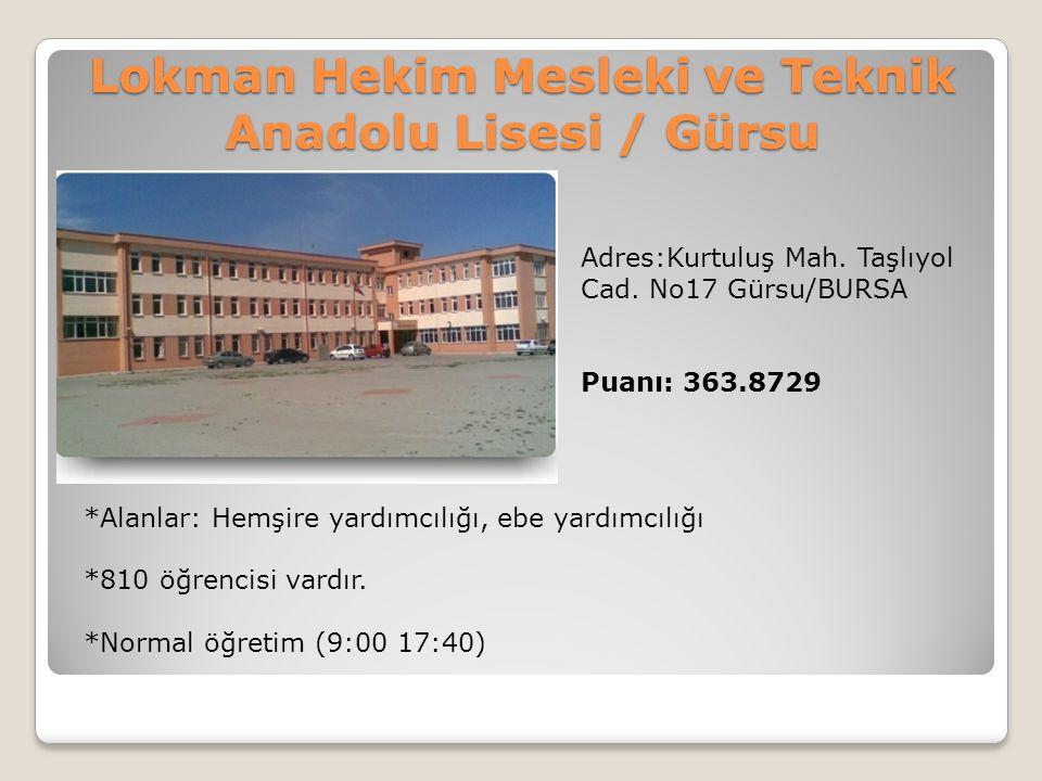 Lokman Hekim Mesleki ve Teknik Anadolu Lisesi / Gürsu