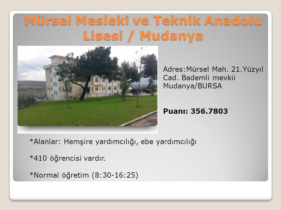 Mürsel Mesleki ve Teknik Anadolu Lisesi / Mudanya
