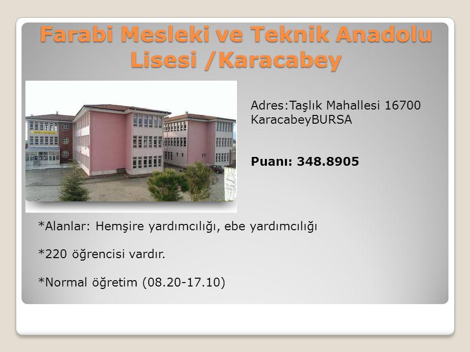 Farabi Mesleki ve Teknik Anadolu Lisesi /Karacabey