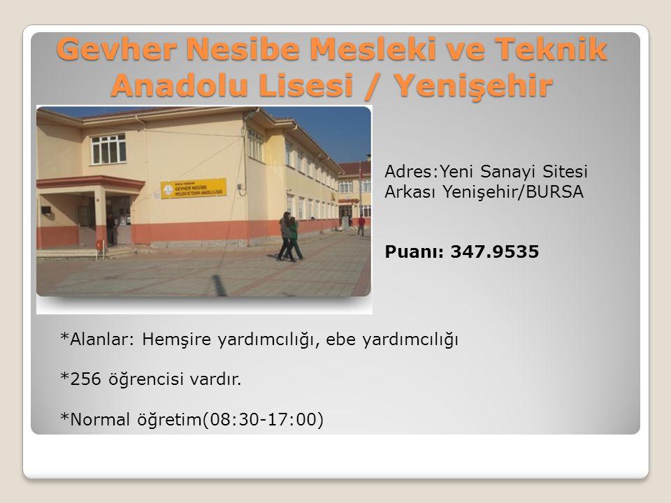 Gevher Nesibe Mesleki ve Teknik Anadolu Lisesi / Yenişehir
