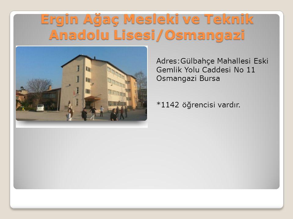 Ergin Ağaç Mesleki ve Teknik Anadolu Lisesi/Osmangazi