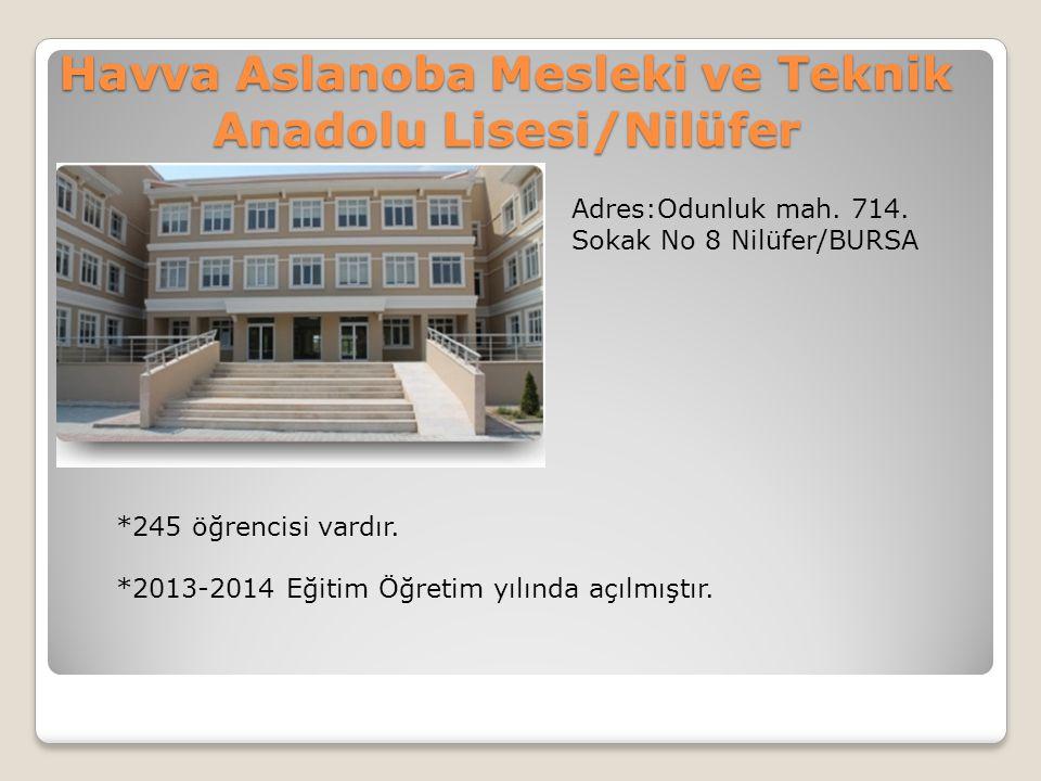 Havva Aslanoba Mesleki ve Teknik Anadolu Lisesi/Nilüfer