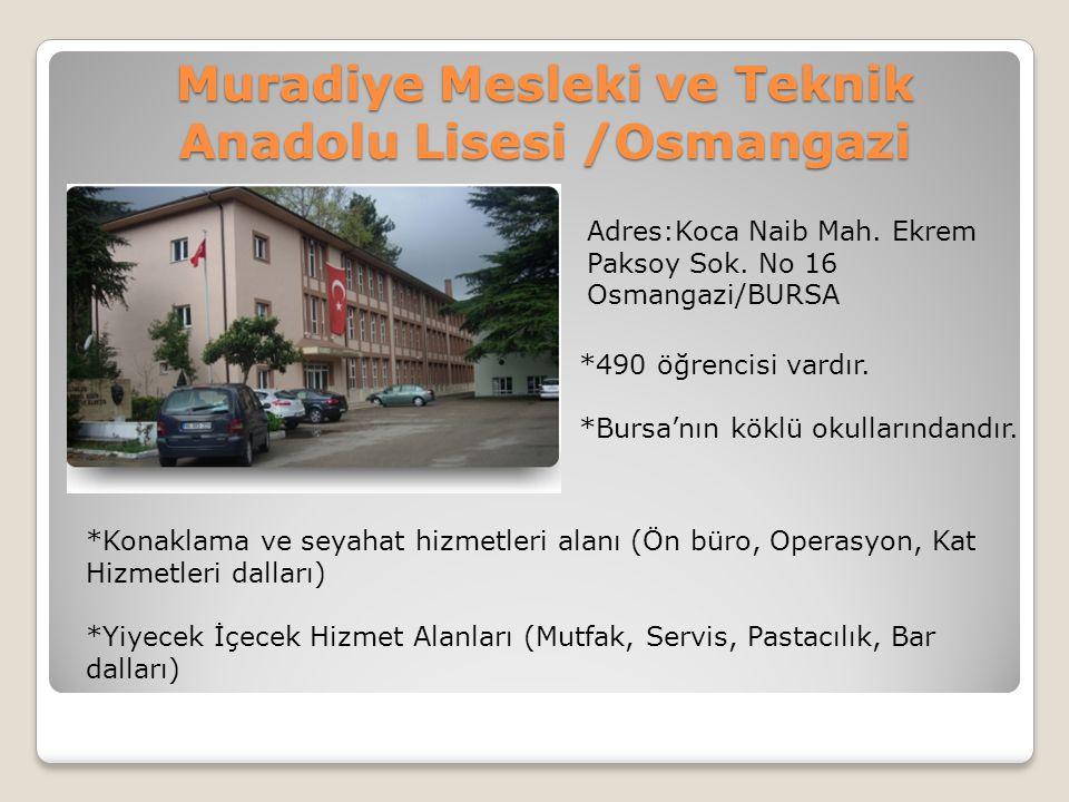 Muradiye Mesleki ve Teknik Anadolu Lisesi /Osmangazi