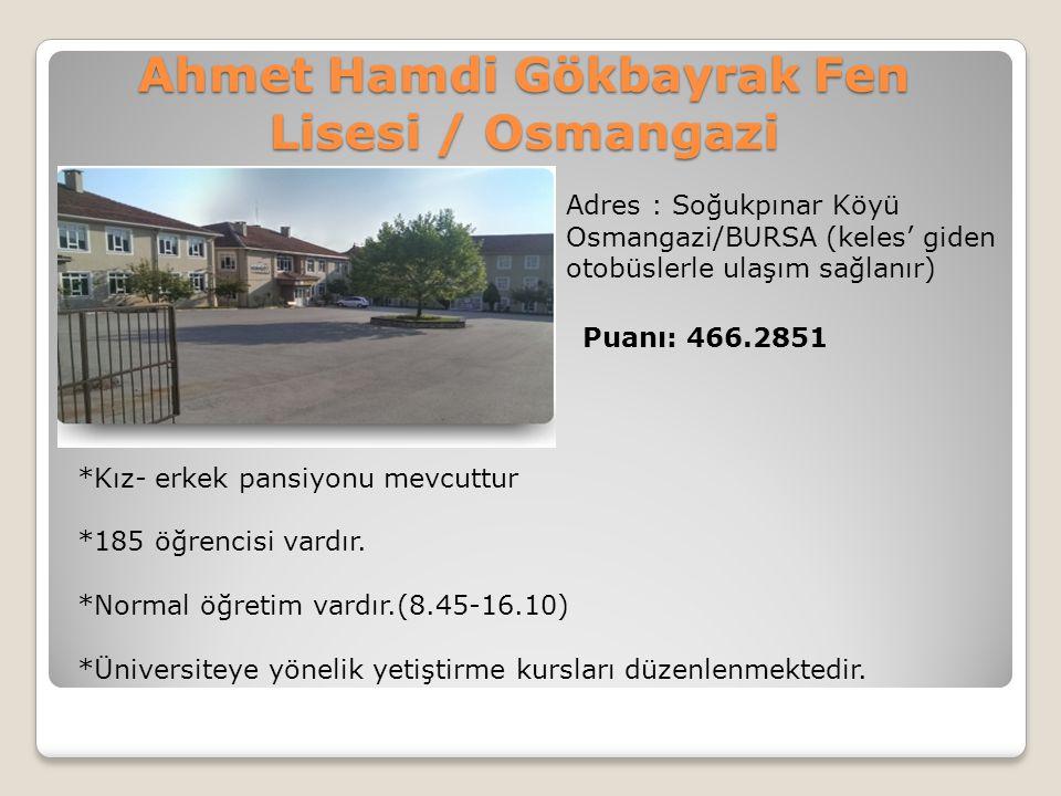 Ahmet Hamdi Gökbayrak Fen Lisesi / Osmangazi