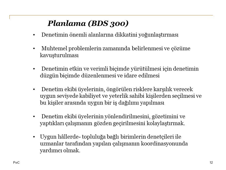 Planlama (BDS 300) Denetimin önemli alanlarına dikkatini yoğunlaştırması. Muhtemel problemlerin zamanında belirlenmesi ve çözüme kavuşturulması.