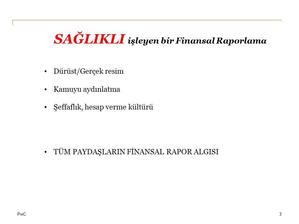 SAĞLIKLI işleyen bir Finansal Raporlama