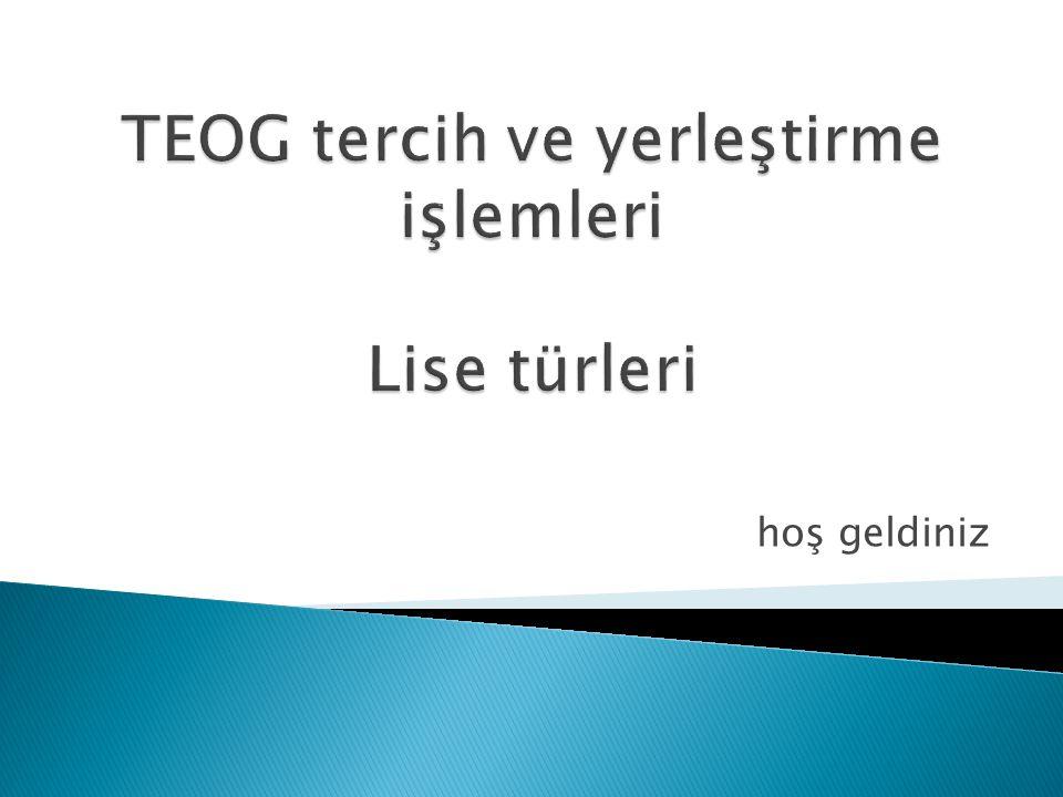 TEOG tercih ve yerleştirme işlemleri Lise türleri