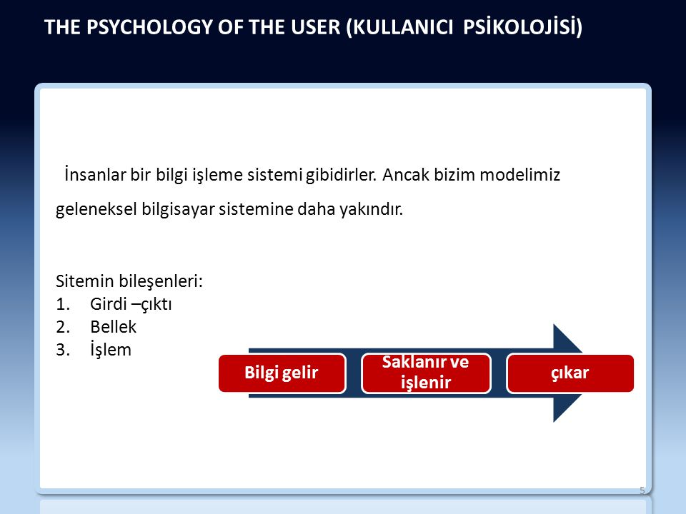THE PSYCHOLOGY OF THE USER (KULLANICI PSİKOLOJİSİ)