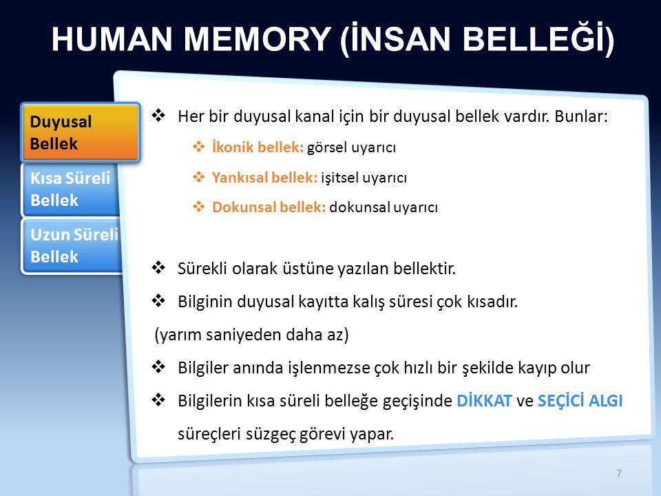 HUMAN MEMORY (İNSAN BELLEĞİ)