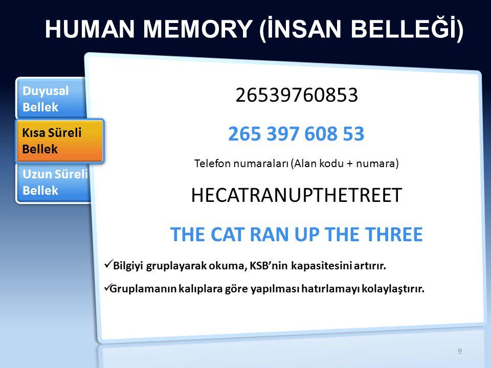 Telefon numaraları (Alan kodu + numara)