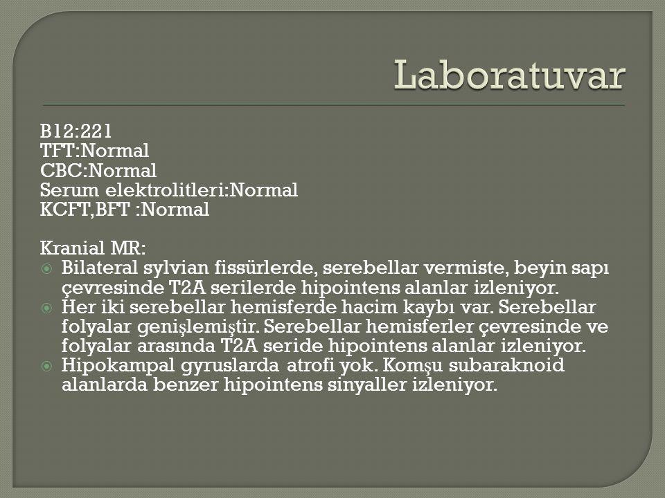 Laboratuvar B12:221 TFT:Normal CBC:Normal Serum elektrolitleri:Normal