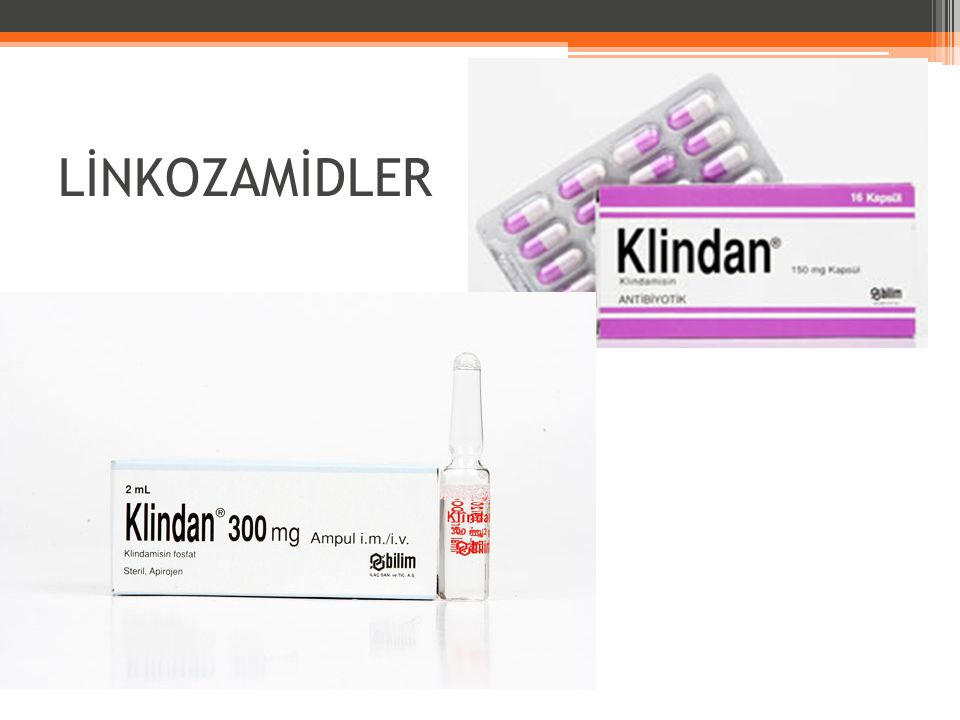 LİNKOZAMİDLER