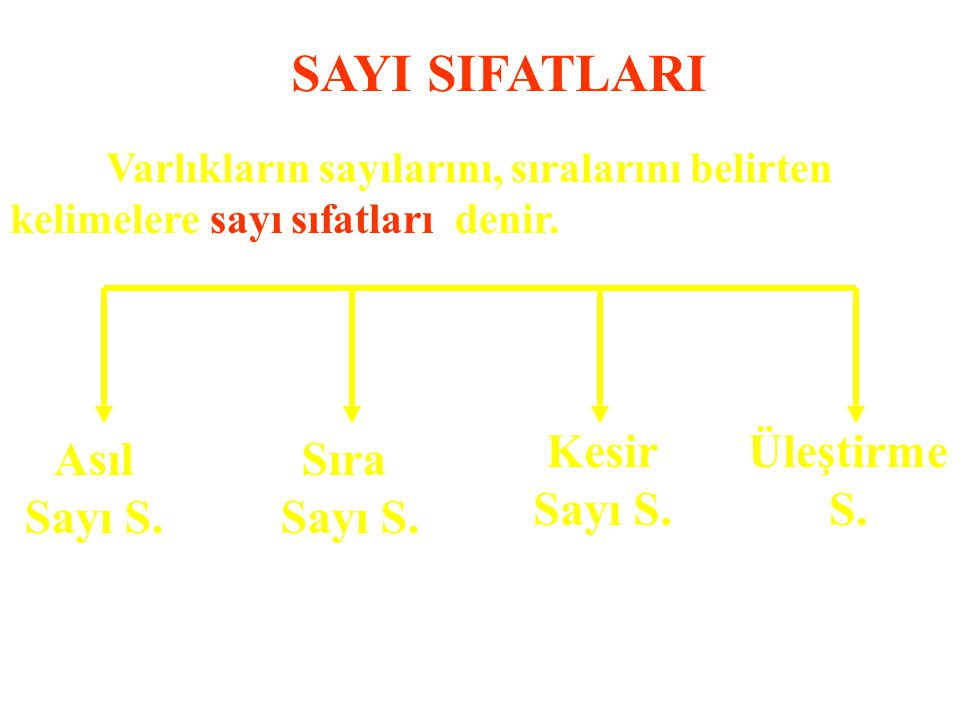 SAYI SIFATLARI Asıl Sayı S. Sıra Üleştirme S. Kesir