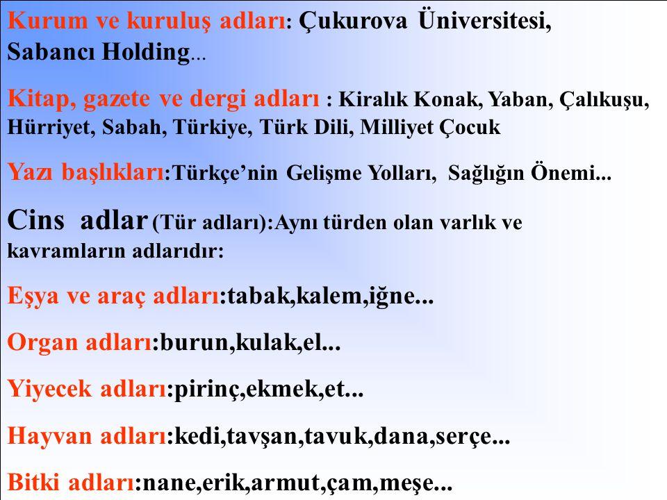 Kurum ve kuruluş adları: Çukurova Üniversitesi, Sabancı Holding...