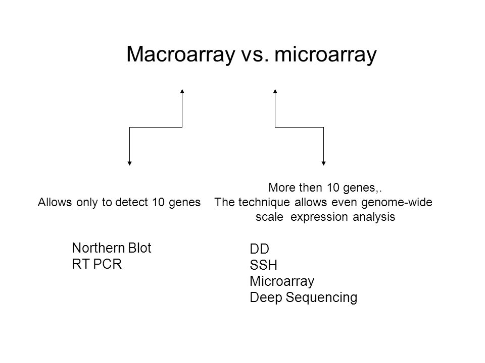 Macroarray vs. microarray