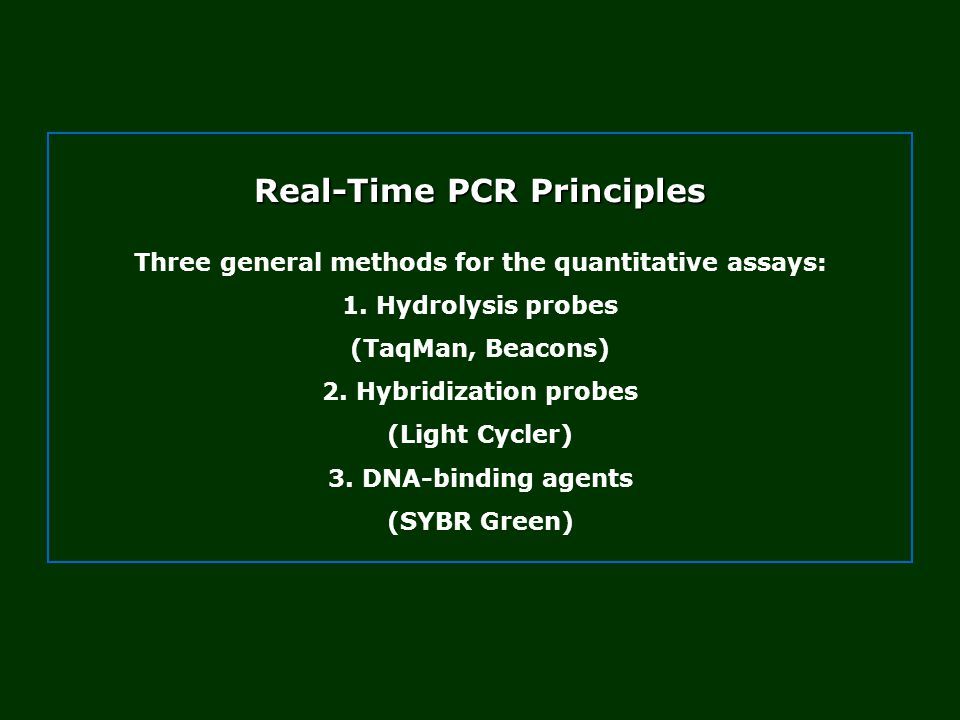 Real-Time PCR Principles