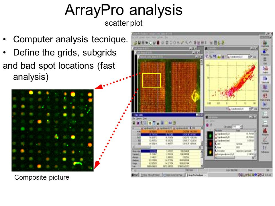 ArrayPro analysis scatter plot