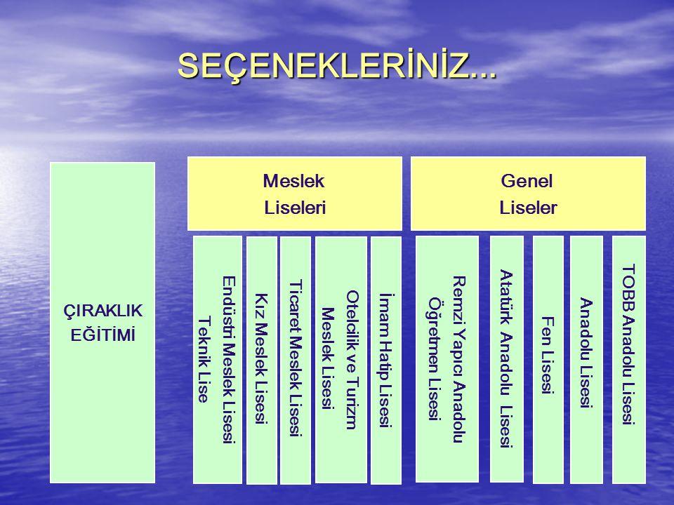 Endüstri Meslek Lisesi Atatürk Anadolu Lisesi